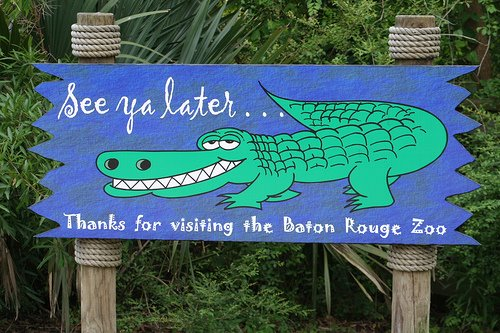Sleepover @ the Baton Rouge Zoo