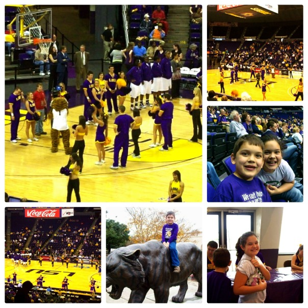 LSU Collage