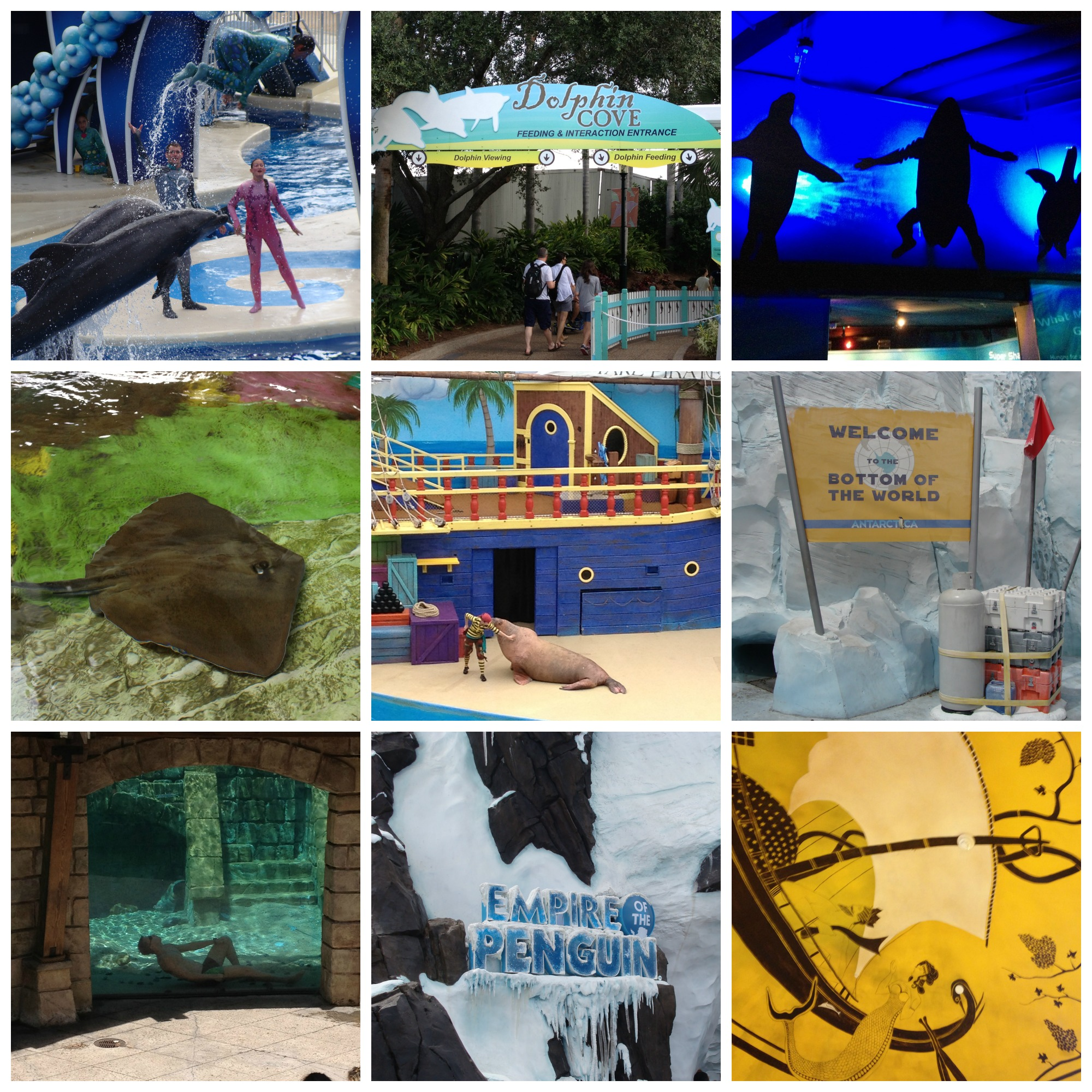 Sea World Orlando Theme Park #VisitOrlando