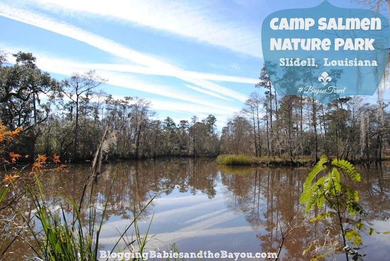 Free Family Fun- Camp Salmen Nature Park  -Slidell, Louisiana