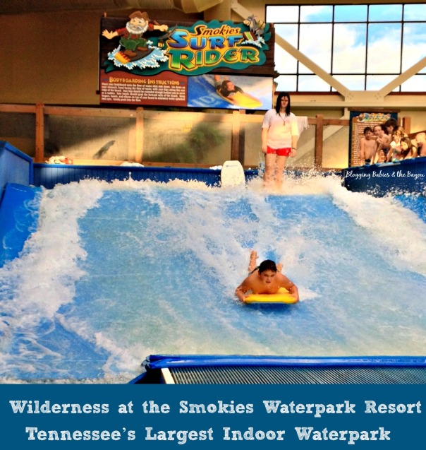 WildWilderness at the Smokies Waterpark Resort